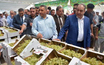 انطلاق فعاليات مهرجان تسويق العنب في محافظة جنين