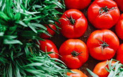 أسعار الخضروات ترتفع.. وتوقعات بانخفاضها نهاية الشهر الجاري