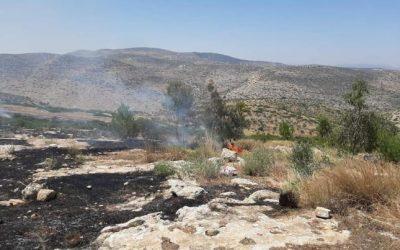 الدفاع المدني: نحو 100 حريق الجمعة