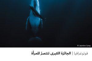 فوتوغرافيا  الجائزة الكبرى تنتصرُ للمرأة