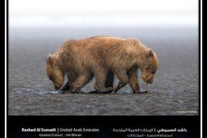 """جائزة حمدان بن محمد الدولية للتصوير تُعلن الفائزين بموسم """"الماء"""""""