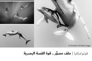 فوتوغرافيا  ملف مصوِّر .. قوة القصة البصرية