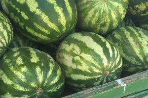 """""""الزراعة"""" تؤكد مواصلة منع استيراد البطيخ حماية للمنتج المحلي"""