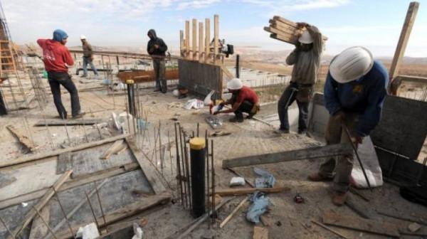 لإحصاء:  مليون عامل فلسطيني.. 17% منهم يعملون في إسرائيل