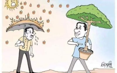 بدل ان تشتكي من الحر ازرع شجرة وكن من المساهمين في تغيير المناخ إيجابيا